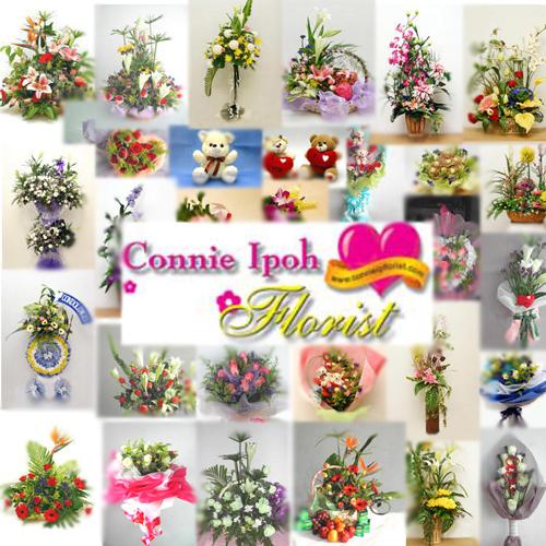 wallpaper_connie4.jpg
